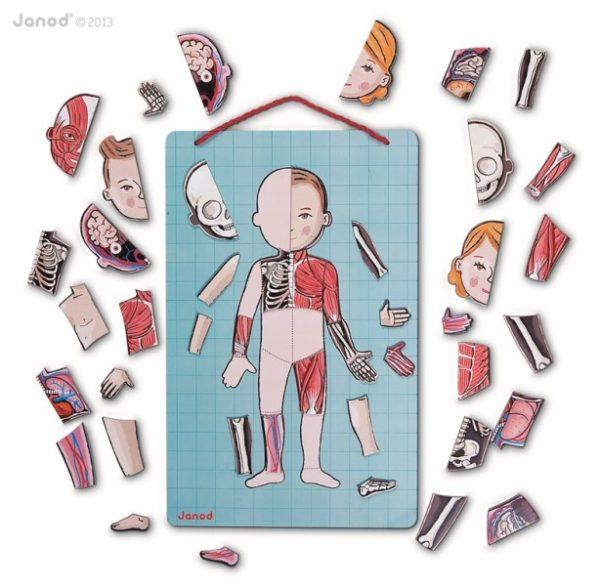 Magnetyczna układanka ciało człowieka Magnetibook, Janod 8672